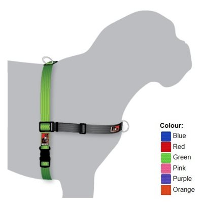 Black Dog Balance Harness 防衝胸帶 - 紫 (XL)